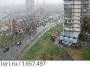 Купить «Снежная метель весной. Москва», фото № 1657497, снято 25 апреля 2010 г. (c) Екатерина Овсянникова / Фотобанк Лори