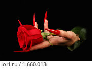 Купить «Ногти», фото № 1660013, снято 20 марта 2010 г. (c) Константин Степаненко / Фотобанк Лори