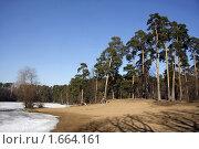 Купить «Москва. Серебряный Бор.», фото № 1664161, снято 3 апреля 2010 г. (c) Владимир Ременец / Фотобанк Лори