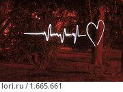 Купить «Рисование замороженным светом - ритм сердца», фото № 1665661, снято 22 марта 2010 г. (c) Шарабарин Антон / Фотобанк Лори