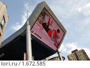 Купить «Рекламный экран», фото № 1672585, снято 17 июля 2019 г. (c) Марьичева Марина / Фотобанк Лори