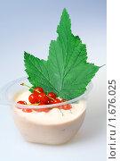 Купить «Фруктовый йогурт с красной смородиной», фото № 1676025, снято 18 декабря 2009 г. (c) ElenArt / Фотобанк Лори