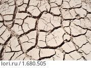 Сухая земля. Стоковое фото, фотограф Сергей Слабенко / Фотобанк Лори