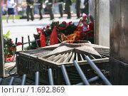 Купить «65 лет Великой Победы в Туле», фото № 1692869, снято 8 мая 2010 г. (c) Андрей Ярцев / Фотобанк Лори