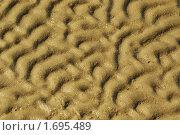 Купить «Следы волн на мокром песке», фото № 1695489, снято 5 сентября 2009 г. (c) Дмитрий Ощепков / Фотобанк Лори
