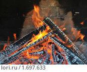 Купить «Горящие дрова в камине», эксклюзивное фото № 1697633, снято 8 мая 2010 г. (c) Юрий Морозов / Фотобанк Лори