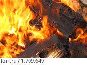 Купить «Огонь», фото № 1709649, снято 24 апреля 2010 г. (c) Дмитрий Верещагин / Фотобанк Лори