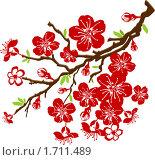 Ветка цветущей вишни. Стоковая иллюстрация, иллюстратор Светлана Арешкина / Фотобанк Лори