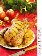 Купить «Утка с яблоками», эксклюзивное фото № 1712845, снято 18 мая 2010 г. (c) Лисовская Наталья / Фотобанк Лори