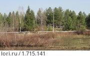 Вдоль реки Вагран. Стоковое фото, фотограф Осипова Ирина / Фотобанк Лори