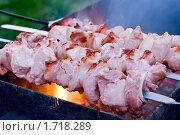 Купить «Обжаривание мяса», фото № 1718289, снято 1 мая 2010 г. (c) Надежда Никитина / Фотобанк Лори