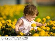 Купить «Маленькая девочка в цветах», фото № 1724629, снято 11 июля 2009 г. (c) Ольга Сапегина / Фотобанк Лори