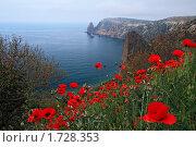 Мыс Фиолент. Крым, эксклюзивное фото № 1728353, снято 9 мая 2010 г. (c) Роман Рожков / Фотобанк Лори