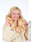 Купить «Гламурная блондинка в роскошной шубе», фото № 1732225, снято 22 февраля 2010 г. (c) Александр Fanfo / Фотобанк Лори