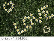 На зеленой траве  выложено белыми цветами слово люблю (Love) Стоковое фото, фотограф Хайруллина Ирина / Фотобанк Лори