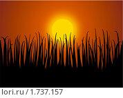 Купить «Закат», иллюстрация № 1737157 (c) Татьяна Васина / Фотобанк Лори