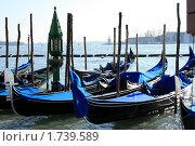 Гондолы в Венеции (2008 год). Стоковое фото, фотограф Ирина Королева / Фотобанк Лори