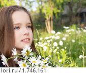 Синеглазая девочка и ромашки. Стоковое фото, фотограф Алешечкина Елена / Фотобанк Лори