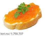 Бутерброд с икрой и веточкой петрушки. Стоковое фото, фотограф Андрей Андреев / Фотобанк Лори