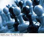 Шахматные фигуры, выставленные в ряд. Стоковое фото, фотограф Марков Николай / Фотобанк Лори