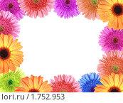 Купить «Рамка из цветов», фото № 1752953, снято 27 октября 2009 г. (c) Boroda / Фотобанк Лори