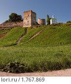 Купить «Талавская башня и Корсунская часовня. Вид с дороги.», фото № 1767869, снято 5 июня 2010 г. (c) Виктор Пелих / Фотобанк Лори