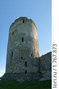 Купить «Изборская крепость», фото № 1767873, снято 5 июня 2010 г. (c) Виктор Пелих / Фотобанк Лори