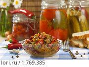 Купить «Лечо в салатнике на фоне банок с консервированными овощами», эксклюзивное фото № 1769385, снято 8 июня 2010 г. (c) Лисовская Наталья / Фотобанк Лори