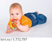 Купить «Младенец с погремушкой», эксклюзивное фото № 1772797, снято 20 мая 2010 г. (c) Куликова Вероника / Фотобанк Лори