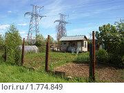 Купить «Приусадебный участок, расположенный под ЛЭП», фото № 1774849, снято 6 июня 2010 г. (c) Елена Ильина / Фотобанк Лори