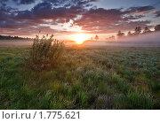 Июньский рассвет. Стоковое фото, фотограф Максим Блинов / Фотобанк Лори