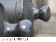 Купить «Артиллерийские орудия», фото № 1780121, снято 13 июня 2010 г. (c) Дмитрий Грушин / Фотобанк Лори