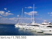 Купить «Яхты в порту», фото № 1785593, снято 3 июля 2008 г. (c) Арестов Андрей Павлович / Фотобанк Лори