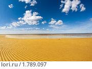 Купить «Берег Белого моря», фото № 1789097, снято 20 июня 2010 г. (c) Александр Fanfo / Фотобанк Лори