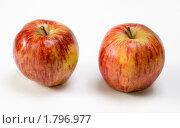 Купить «Два яблока сорта Ред Делишес», эксклюзивное фото № 1796977, снято 16 июня 2010 г. (c) Александр Щепин / Фотобанк Лори
