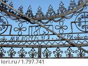 Купить «Фрагмент железных кованых ворот на фоне неба», эксклюзивное фото № 1797741, снято 26 июня 2010 г. (c) Gagara / Фотобанк Лори