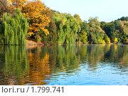 Осенний парк с озером. Стоковое фото, фотограф Юрий Брыкайло / Фотобанк Лори