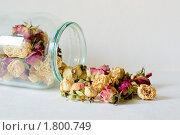 Розы в банке. Стоковое фото, фотограф Денис Петров / Фотобанк Лори