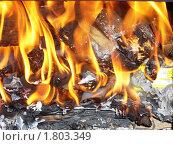 Купить «Дрова и огонь», фото № 1803349, снято 23 июня 2010 г. (c) елена прекрасна / Фотобанк Лори
