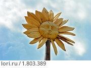 Ялуторовск.  Деревянная скульптура на фоне неба (2010 год). Редакционное фото, фотограф Александр Тараканов / Фотобанк Лори
