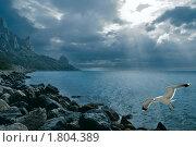 Купить «Море», фото № 1804389, снято 25 марта 2019 г. (c) Сергей Павлов / Фотобанк Лори