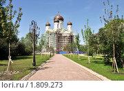 Купить «Строительство собора святой Екатерины в г. Пушкине.», фото № 1809273, снято 21 мая 2010 г. (c) Александр Кокарев / Фотобанк Лори