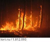 Лесной пожар, фото № 1812093, снято 1 июля 2010 г. (c) Евгений Дубинчук / Фотобанк Лори