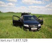 Nissan в поле (2010 год). Редакционное фото, фотограф Сергей Криволапов / Фотобанк Лори