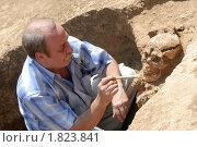 Купить «Археолог на раскопках работает с найденными останками человека бронзового века. Раскопки кургана в Ремонтненском районе Ростовской области.», фото № 1823841, снято 19 февраля 2020 г. (c) A Челмодеев / Фотобанк Лори