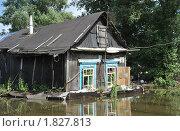 Купить «Затопленный дом», фото № 1827813, снято 26 июня 2010 г. (c) Free Wind / Фотобанк Лори