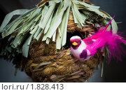 Купить «Сувенир, птица у гнезда», фото № 1828413, снято 18 апреля 2010 г. (c) Владимир Шеховцев / Фотобанк Лори