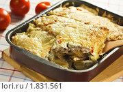 Купить «Мясо по-французски», эксклюзивное фото № 1831561, снято 28 июня 2010 г. (c) Лисовская Наталья / Фотобанк Лори