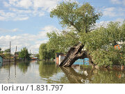 Купить «Наводнение», фото № 1831797, снято 26 июня 2010 г. (c) Free Wind / Фотобанк Лори