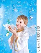 Мальчик в костюме ангела ловит мыльные пузыри. Стоковое фото, фотограф Игорь Губарев / Фотобанк Лори